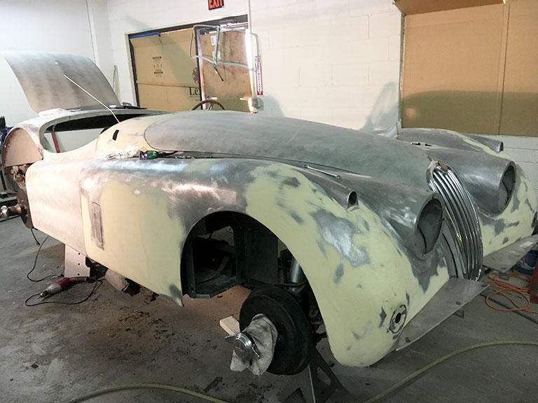 Jaguar_1